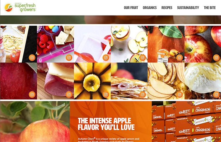 autumn glory apple website