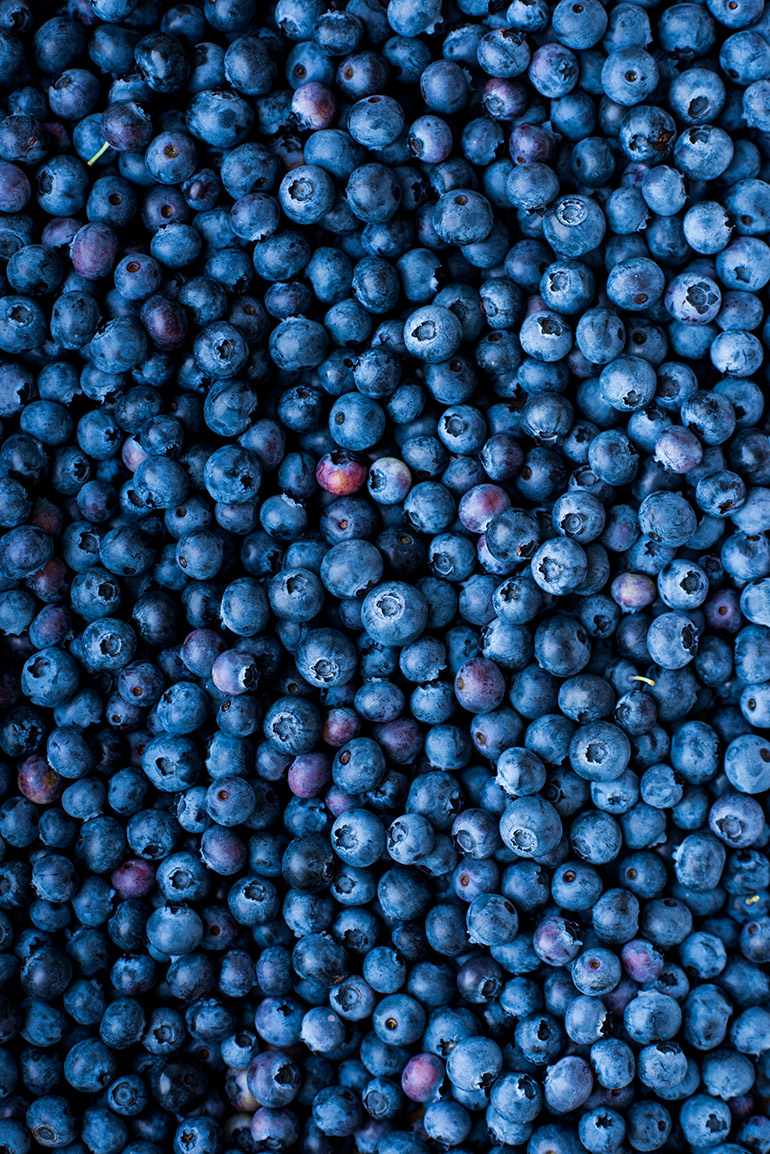 fresh blueberries crowded kitchen