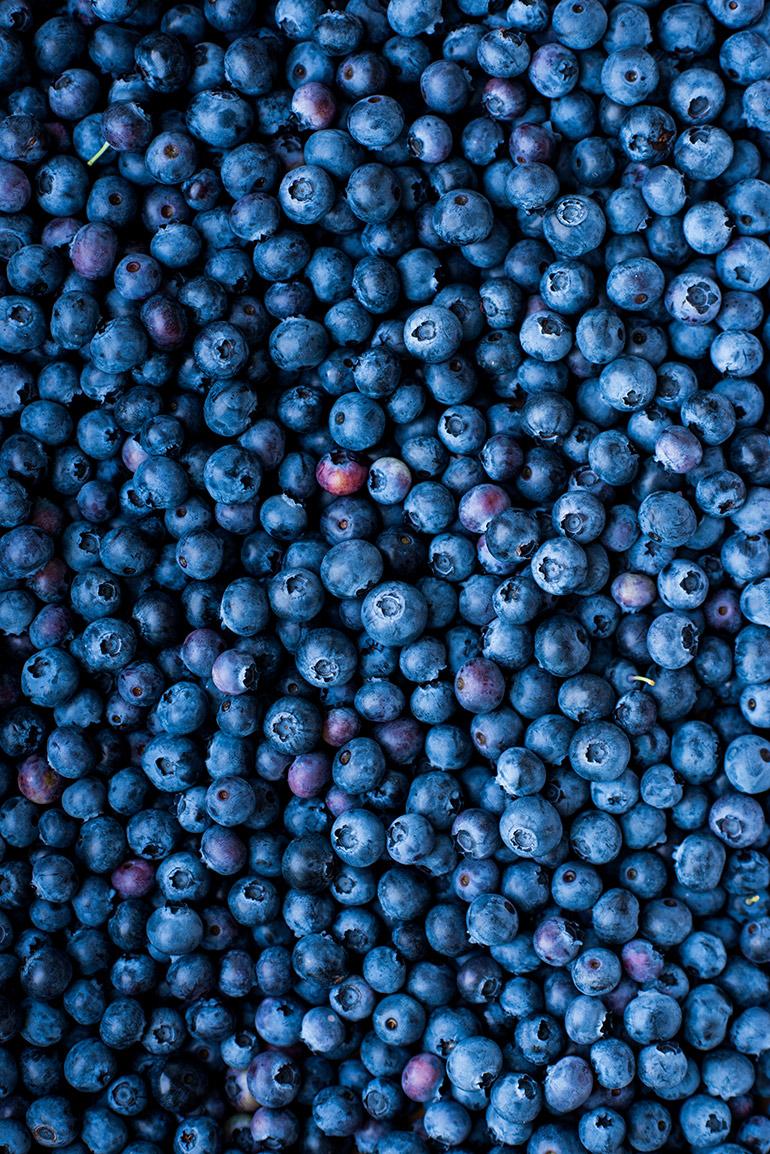 fresh blueberries crowded kitchen