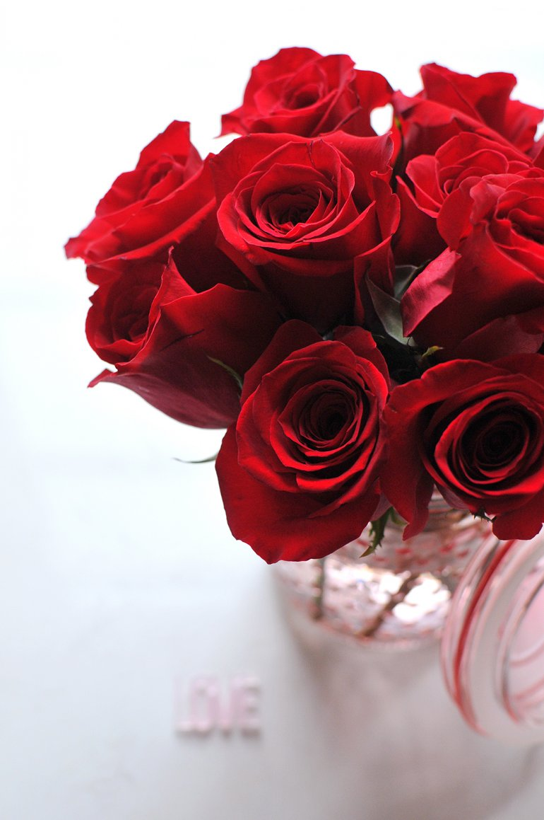 gorgeous roses for valentines day