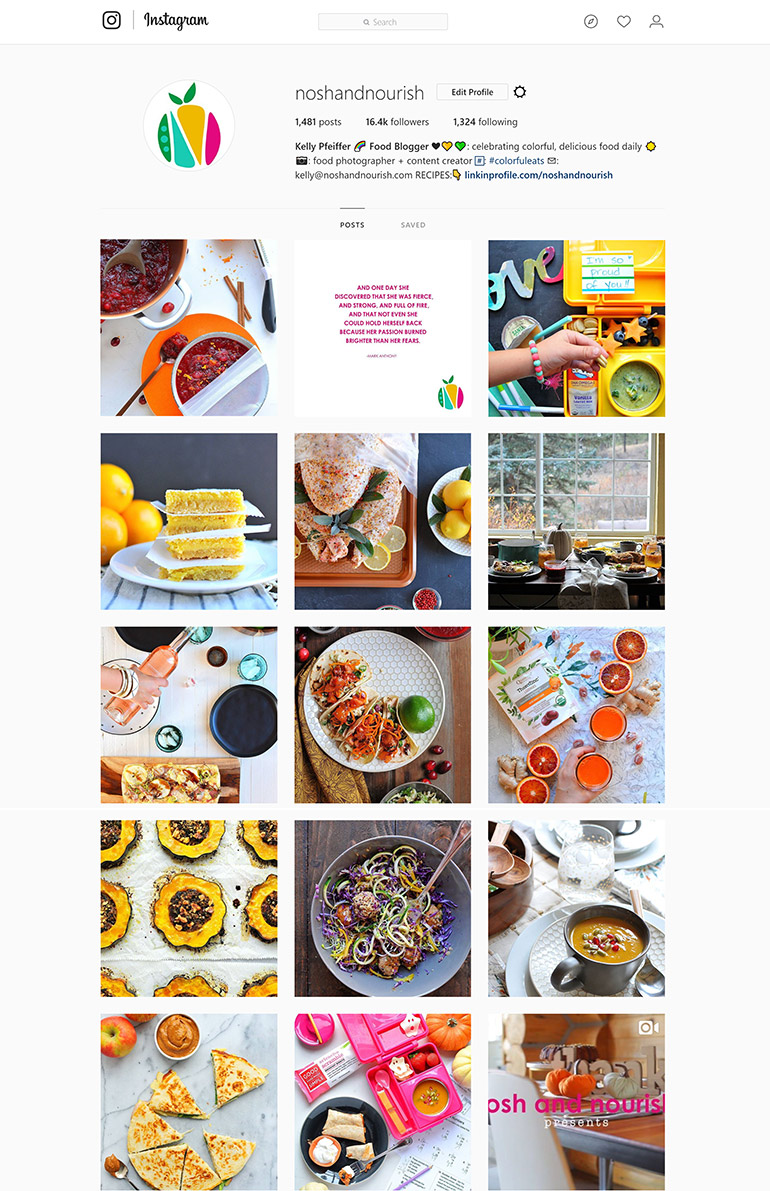 instagram - nosh and nourish