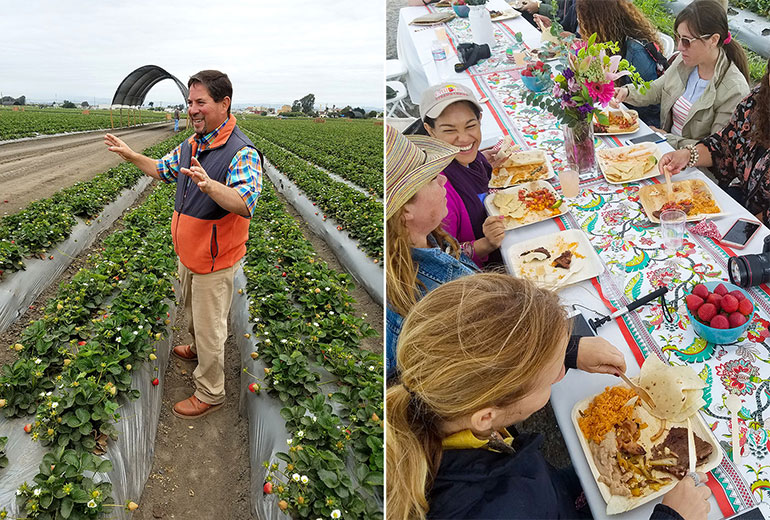 strawberry farmer and farm to table lunch